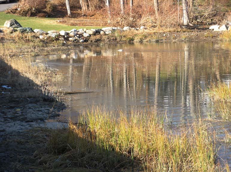 landtech tidal wetland restoration - phase three