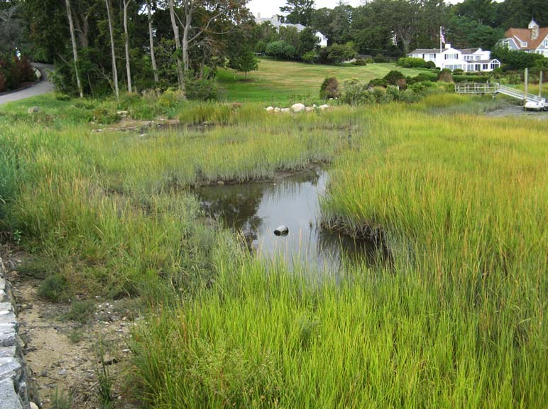 Land Rover Darien >> Environmental Restoration | Tidal Wetland Restoration | Darien CT | LANDTECH