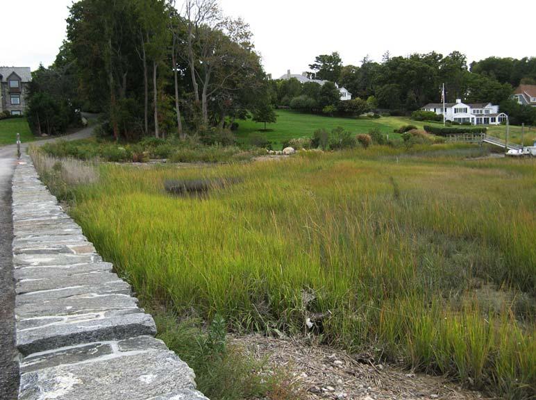 landtech tidal wetlands restoration - phase six